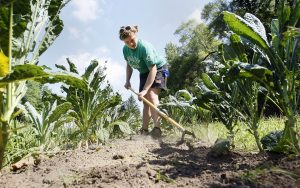 Karakter Mahasiswa Pertanian